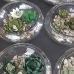 annspaper-crepe-paper-succulent-dish-gardens-hyatt-place