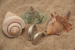 wedding-rings-shells-beach-officiant-services
